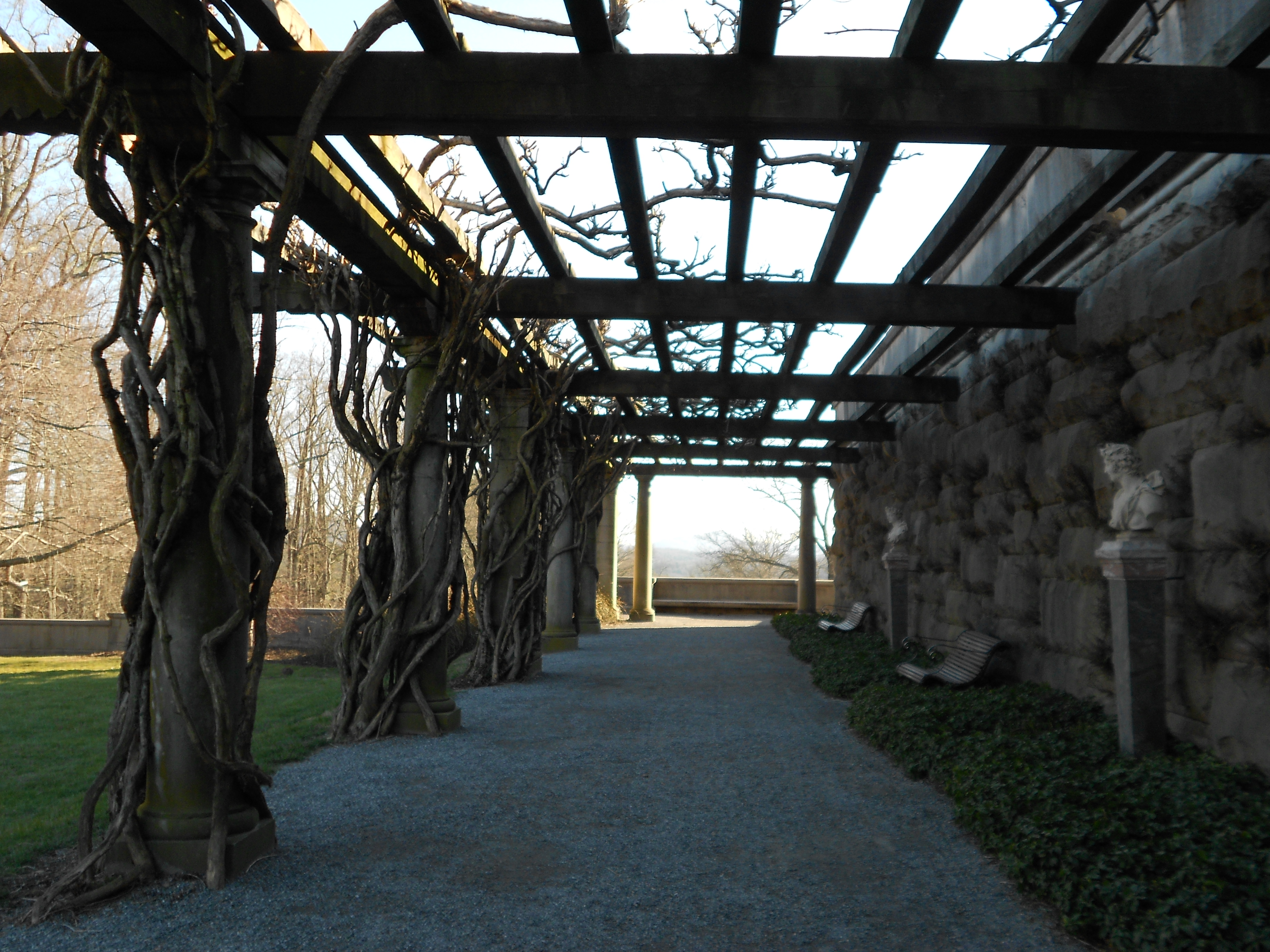 biltmore estate my life with nf2